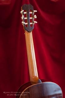 009 Kasha Guitar #3_MG_0688 copy