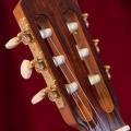 011 Kasha Guitar #3_MG_0701copy