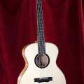 Rosenblatt Guitars Model PF in Moonwood spruce andMaple