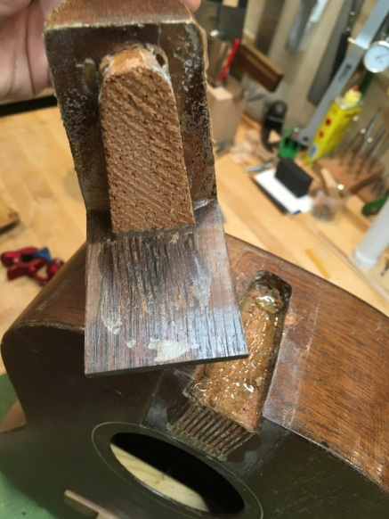 Repairing neck joint on tenor guitar