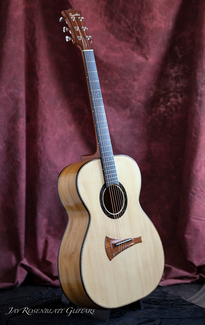 01radially braced acoustic guitar.jpg